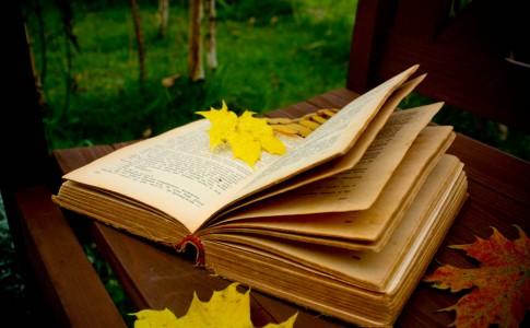 autumn_reading_by_cr1ms0n13-d3006q4