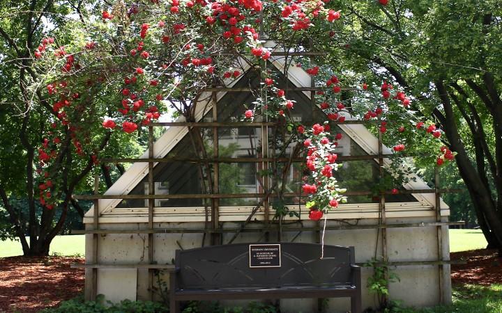 Ryerson - park bench