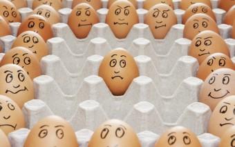 AILEEN KARL| Just Call Me Humpty Dumpty