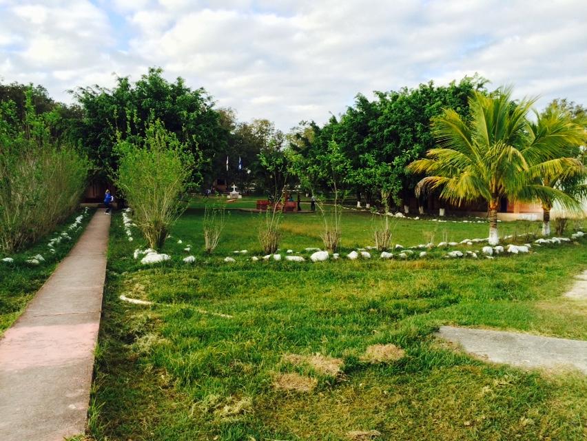 Image of Honduras Farmland