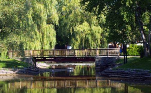 A photo of a bridge on Toronto island over a pond
