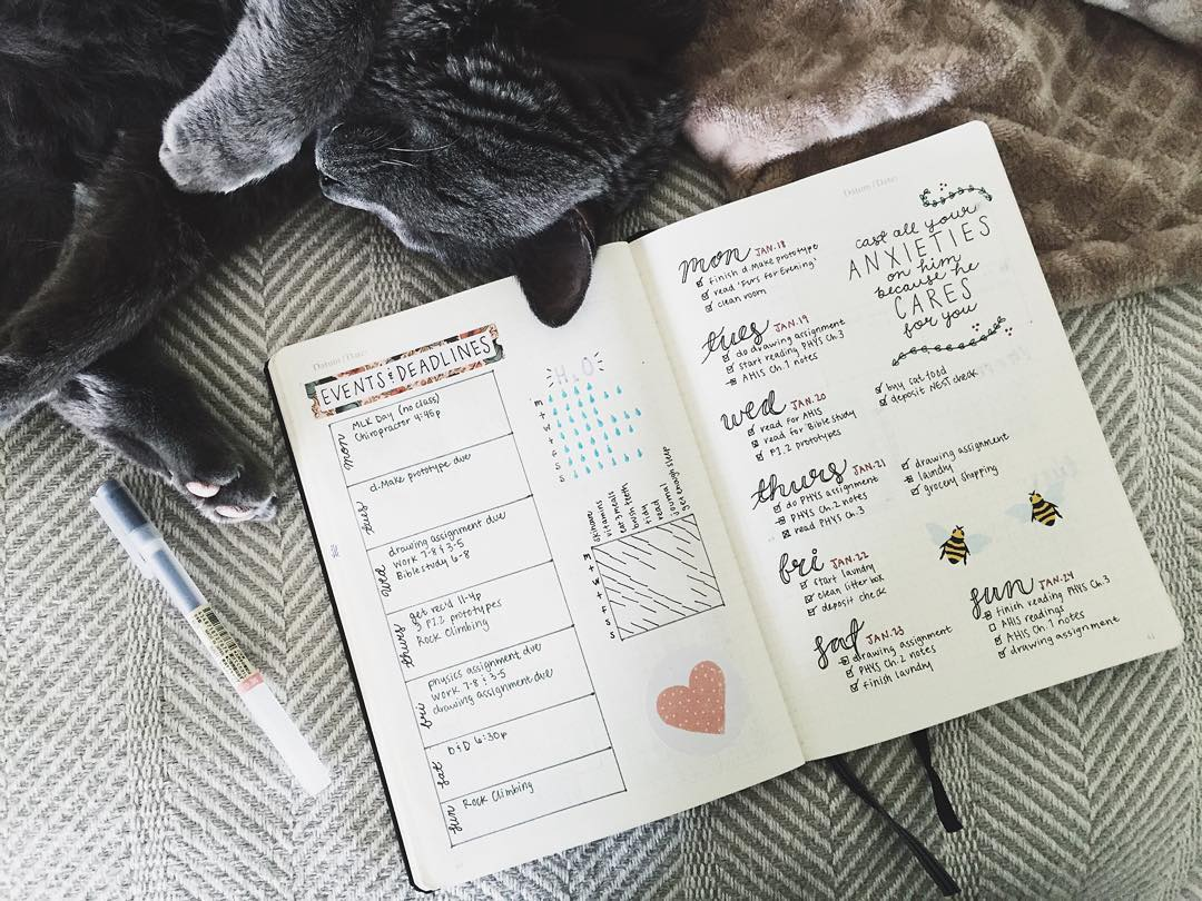 a journal with handwritten notes on a bed with a cat
