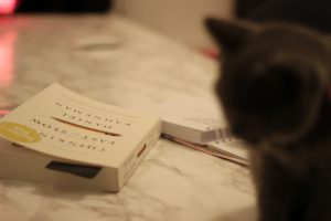 a cat and a book sitting on a desk