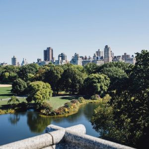 a wide shot of trees and water in Central Park, with the skyline of buildings in the distance