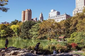 people exploring central park in the morning with autumnal trees, a lake, rocks and buildings in the background