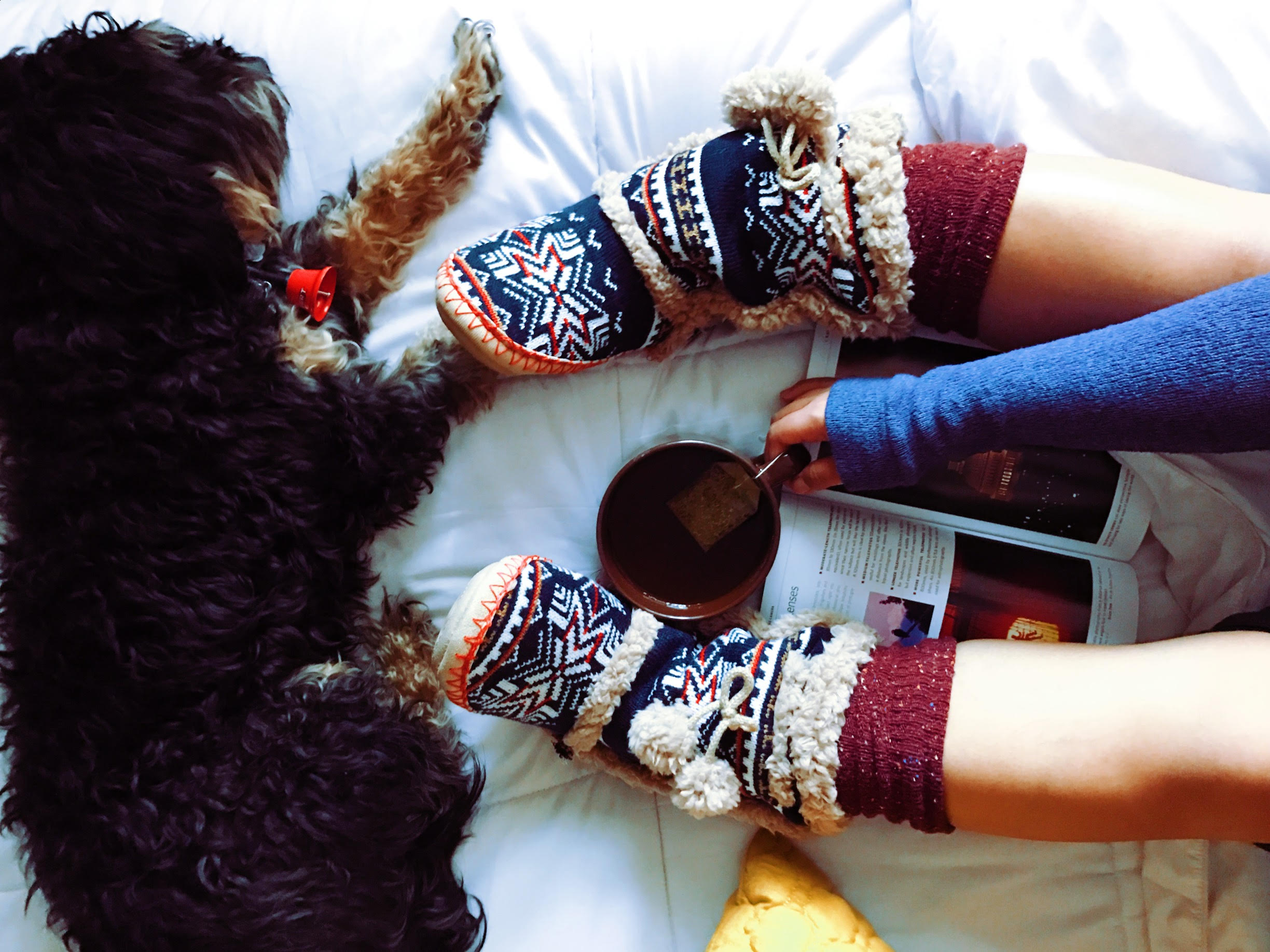 A cozy scene on a bed with a dog and warm slippers.