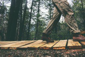 Someone walks along a wooden boardwalk in a forrest