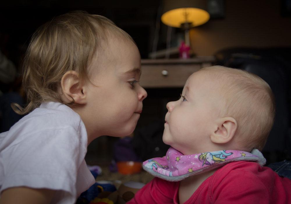 _Siblings